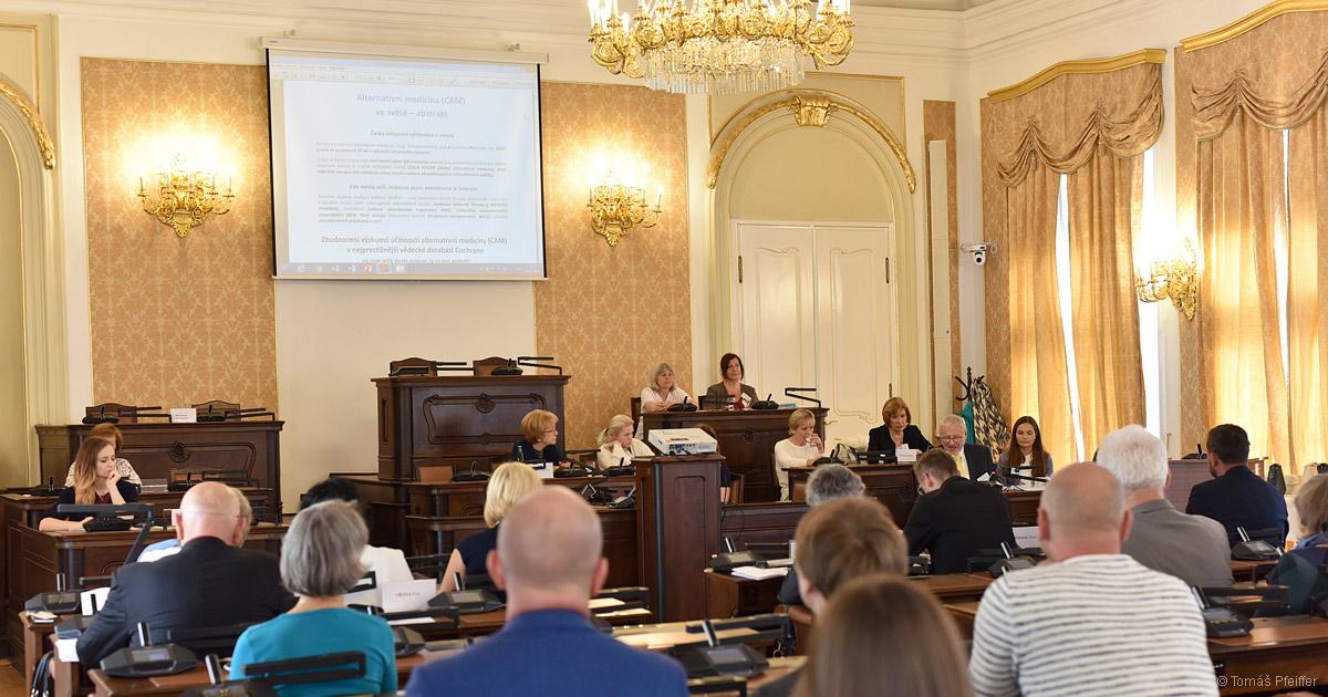 Veřejné slyšení v Poslanecké sněmovně ČR