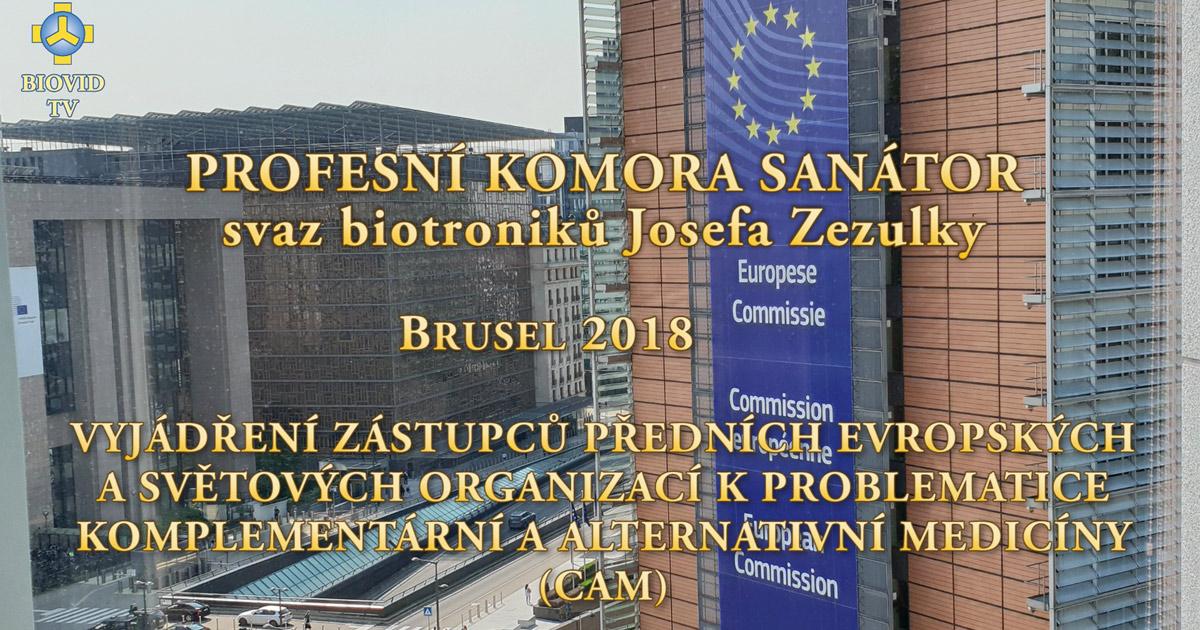 Zástupci světových organizací k problematice komplementární a alternativní medicíny (CAM) - Brusel 2018