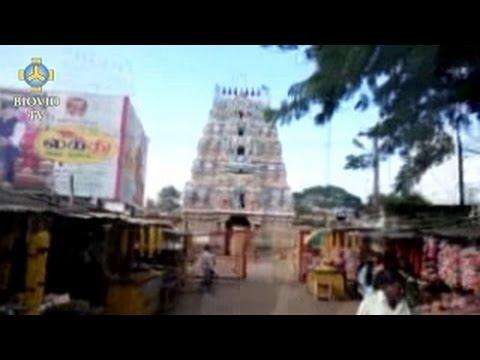 Vysílání z Indie – 3. 1. 2015